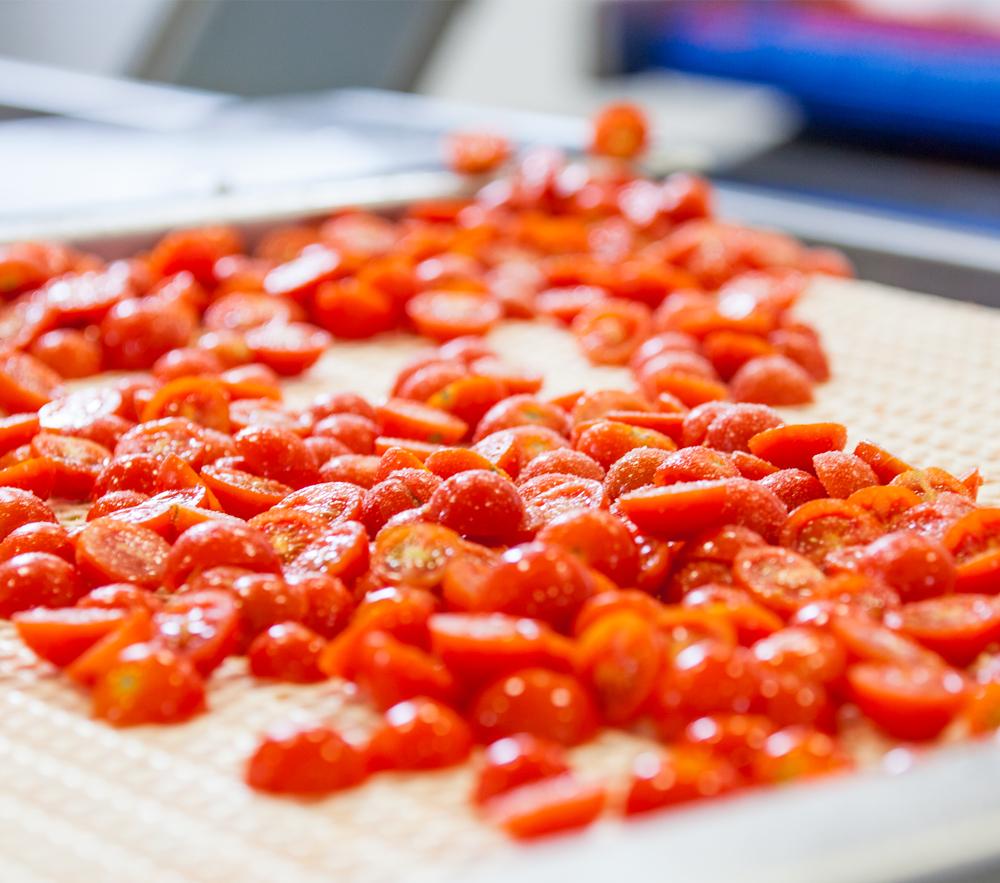 Essiccazione del Pomodoro Fresco – 1